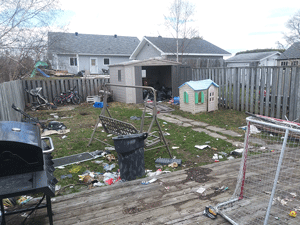 Before Yard Clean Up